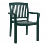 Кресло Papatya Мистраль зеленый